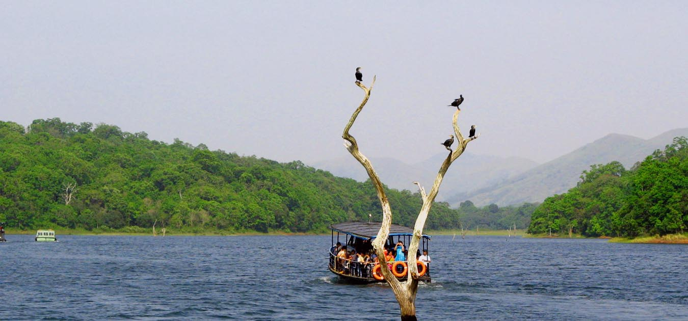 best_palces_to_stay_at_thekkady